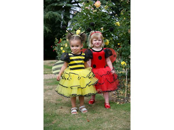 Costume ladybird red/black - 2 à 3 ans