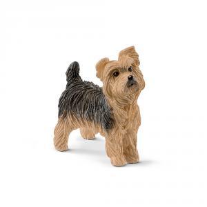 Schleich - 13876 - Figurine Yorkshire Terrier 3,8 cm x 1,9 cm x 3,6 cm (369612)