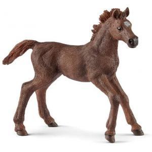 Schleich - 13857 - Figurine Poulain Pur-sang anglais 9 cm x 3,3 cm x 8 cm (369646)