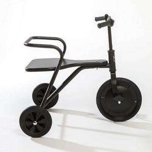 Foxrider - 106.000145 - Tricycle Foxrider noir (374386)
