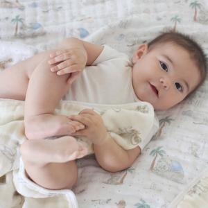 Aden and Anais - ADBC10014DI - Couverture de rêve 100% coton Disney baby - My Darling Dumbo (457084)