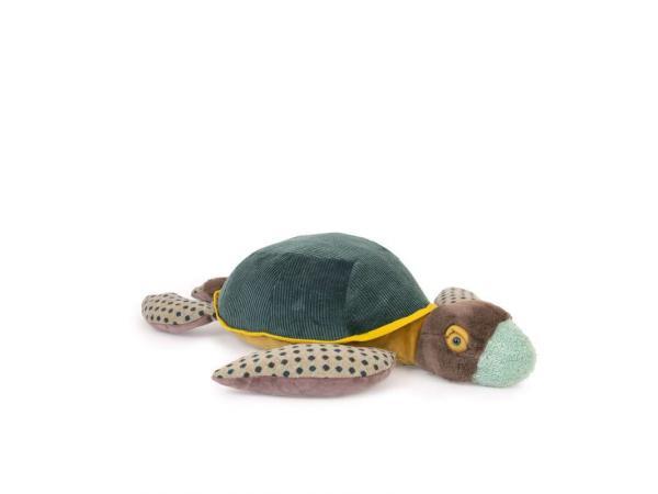 Grande tortue tout autour du monde