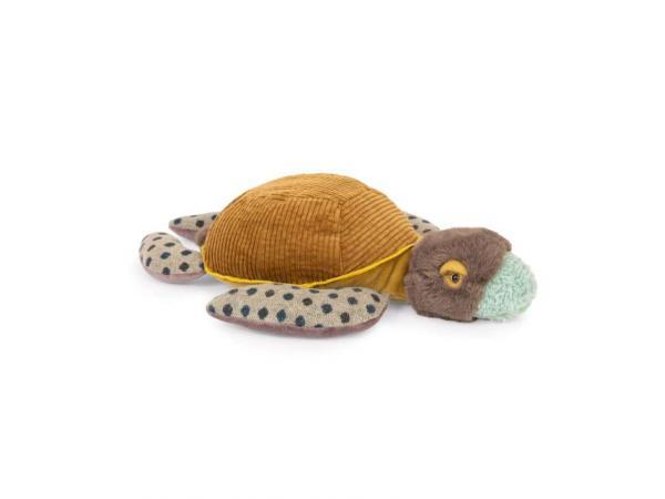 Petite tortue tout autour du monde